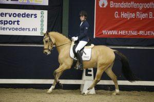 Indoor Oosteind pony dressuur @ Manege Buitenhorst